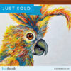 Sold Colourful Cocky