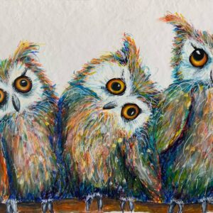 3 owls on a branch